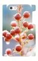 iPhone5・5Sケース:赤い木の実