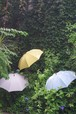 【50%off!】おしゃれなデザイン京プリントの折り畳み晴雨兼用傘!紫外線対策に!¥12960→¥6480 osotoオリジナル