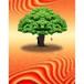 神秘の森・13(かくれんぼの樹01) A4