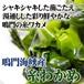 鳴門海峡産 糸わかめ(65g)