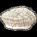 LINTON TWEED BERET RAINBOW  リントンツイード ベレー帽 レインボー