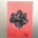 植物D ドライフラワー アート インテリア 絵画 Interior painting