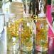 ハーバリウムS mimosa