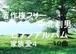中北利男 ピアノアルバム 家族愛4