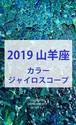2019 山羊座(12/22-1/19)【カラージャイロスコープ】