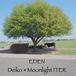 【ミニアルバム】Deiko「EDEN (track by Moonlight ITER)」のダウンロード音源