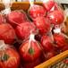【全国送料無料】くまと文鳥の完熟トマト 4キロ箱詰め(糖度10以上)