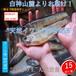 【完全予約制】【天然岩魚/15匹】自然の恵み 期間限定販売 青森県白神山麓便【冷凍便】