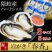 隠岐島直送牡蠣 岩がき 春香Sサイズ5個セット 殻付き 日本産 ハーフシェル  大粒生牡蠣