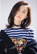 ブリティッシュ トラ柄 セーターニット 女性向け プライマーシャツ 丸えり 大人気 エレガント スタイリッシュ セーター カッコイイ