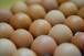 K.平飼い卵5kg分(トレイ詰め75個)
