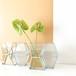 COMBINATION Vase / すりガラス