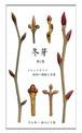 p007-ポストカード 冬芽シリーズ 第2集 4枚セット 大判はがきサイズ タテ