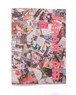 "sale ! ""JAPAN AIR"" digital edition"