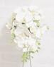 【アーティフィシャルフラワー】胡蝶蘭のセミキャスケードブーケ