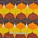 プリントカーテン(横170×縦170)