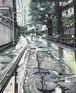 五月雨の道 中野区上鷺宮