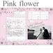 フォト婚姻届【Pink-Yellow flower】