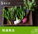 《隔週発送》FIO野菜-定期便 Sサイズ