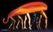 油彩画:ミッシング・リンク~あるいは寿司としてのダーウィン・フィッシュ (プロメテウスの鉄火風)~