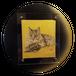 【寸松庵】猫【25×25cm】
