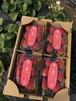 【送料無料】宮城県名取市産イチゴ 土耕栽培幸ノ香 約280g×4パック
