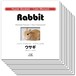 Hyper Booklet - ケアマニュアル「ウサギ」(10部)