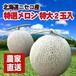 [特大]メロン2玉入り(2.0~2.5kg×2玉)