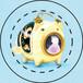 【雑貨】缶バッジ:かとりわんこう:こいのぼり/フレンチブルドッグ