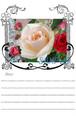 薔薇のメッセージカード*No,ex「凛と咲く白い薔薇」
