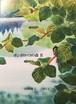 ポンポロッコの森 Ⅱ