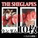 【チェキ・ランダム10枚】THE SHEGLAPES