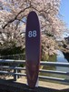 88SURFBOARDS  8'0''  Tri Fin  Wine/Yellow  本州送料¥16500込み価格