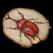 【原画】輪切り絵アート:赤いカブトムシ (Rhinoceros beetle)