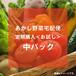 あかし野菜宅配便 定期購入<お試し> 中パック