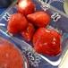 旬のいちごのシフォンケーキ大
