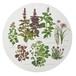 マルチボード 北欧デザイン 白樺 木製 Φ 35 KOUSTRUP & CO. - Herbs in the Garden 庭園のハーブ