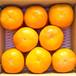 秋の贅沢 【予約】伊豆柿 L(5kg)