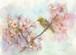3月30日桜(フレーム付)