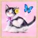 【印刷物】ステッカー(シール):「ハート模様の子猫」Hachiware Heart
