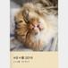 #日々猫 2016・にゃん歌57577
