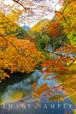 石霞渓の紅葉