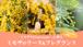 ミモザの日に贈る★ミモザリースとフレグランス材料キット★Zoomレッスン付き・2/23(火・祝)、24(水)え、27(土)