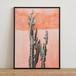 ポスター30cm×40cm /orange cactus(フレーム付き)【取り置き専用】