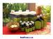 セサミオイル(Cured Sesame Oile) Toatal Ayurveda 1L