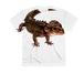 アカメカブトトカゲTシャツ(full graphic)