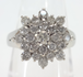 0.75Ct ダイヤモンド パヴェデザインリング プラチナ ~0.75Ct Diamond Pave Design Ring Platinum~