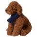 【送料無料】  犬服(ドッグウェア) ペット服 ふわふわニット マフラー ネイビー