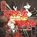 カマラーダ:Roys / SPLIT (CD)