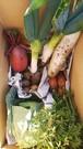 三浦海岸育ち 秋冬の野菜セット29